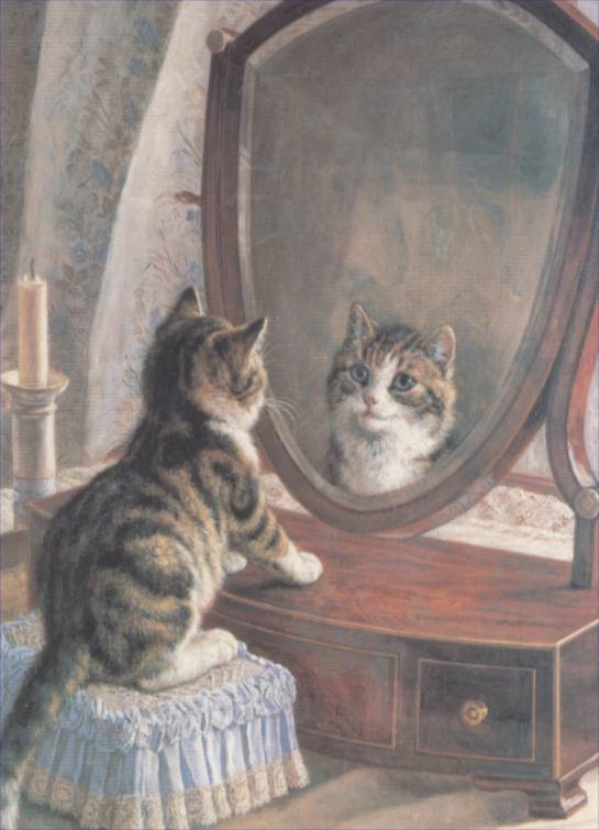 joli reflet