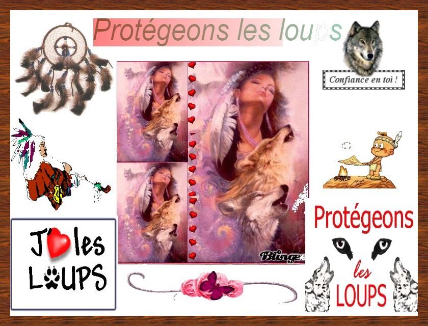 Image du Blog jidima.centerblog.net